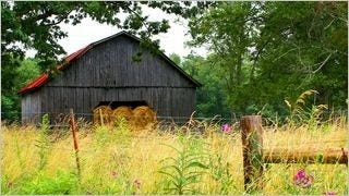 rustic-barns-wallpaper-collection-series-two-11