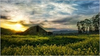 rustic-barns-wallpaper-collection-series-two-13