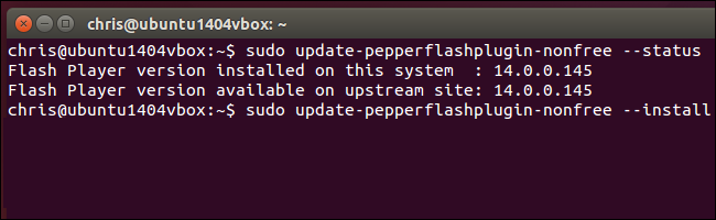 update-pepper-flash-plugin-for-chromium-on-ubuntu