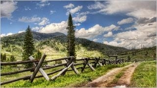 fences-wallpaper-collection-series-two-09