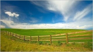 fences-wallpaper-collection-series-two-06