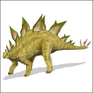 An artist's rendering of a Stegosaurus