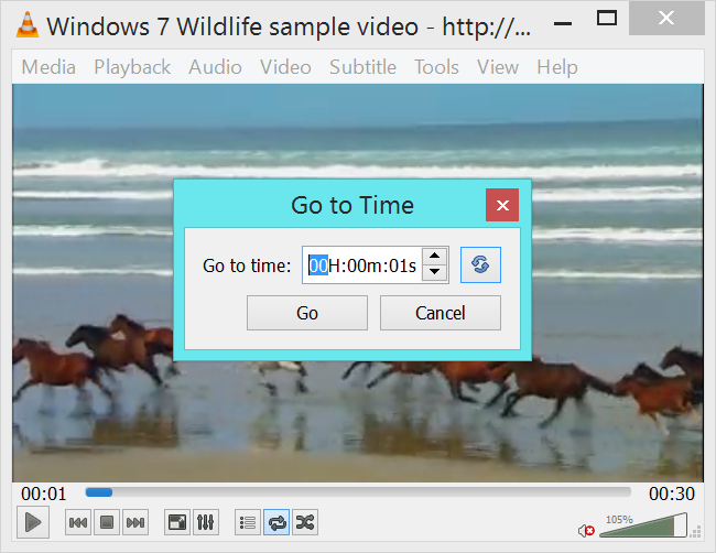 vlc-to-to-specific-time