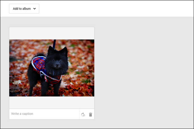 For the purposes of this tutorial we'll assume you're not a regular Google+ user and you need to create a simple private album for your wallpaper images.