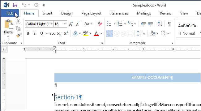 01_clicking_file_tab