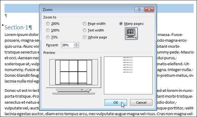 08_clicking_ok_on_zoom_dialog