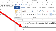 How to Remove Automatic Horizontal Lines in Word
