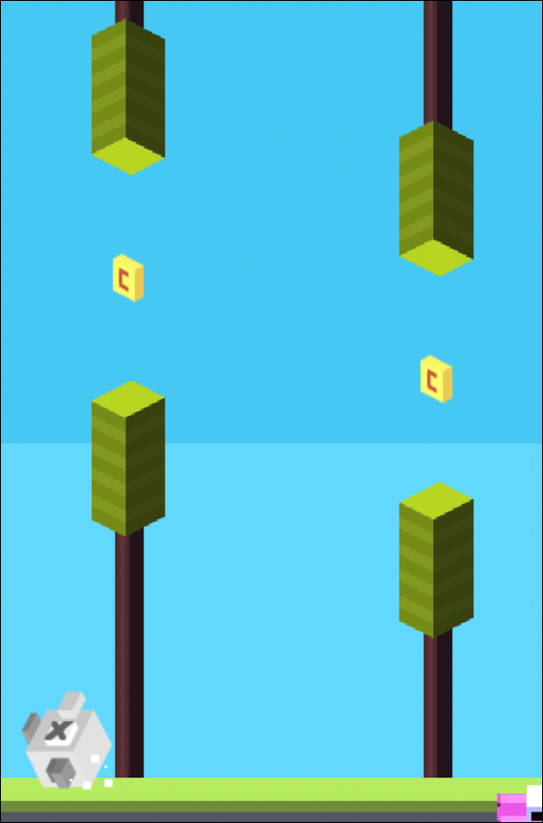 flap2