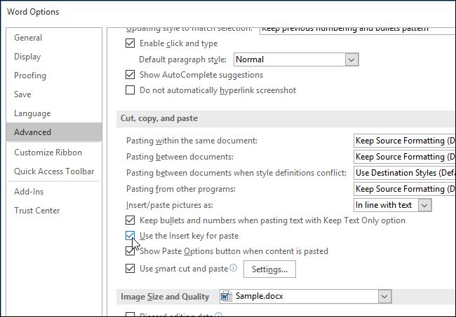 04_selecting_use_the_insert_key_for_paste