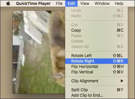 How to rotate videos on a mac thats it this video will now play with the correct orientation now when we try to close it well be given an option to save it ccuart Image collections