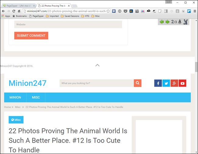 How To Quickly Navigate MultiPage Articles With PageZipper Tips - 22 photos proving animal world better place