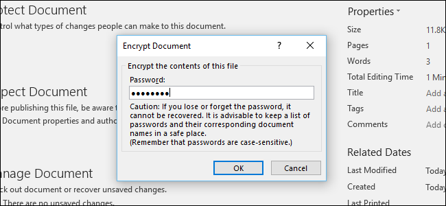 password for word document 2007