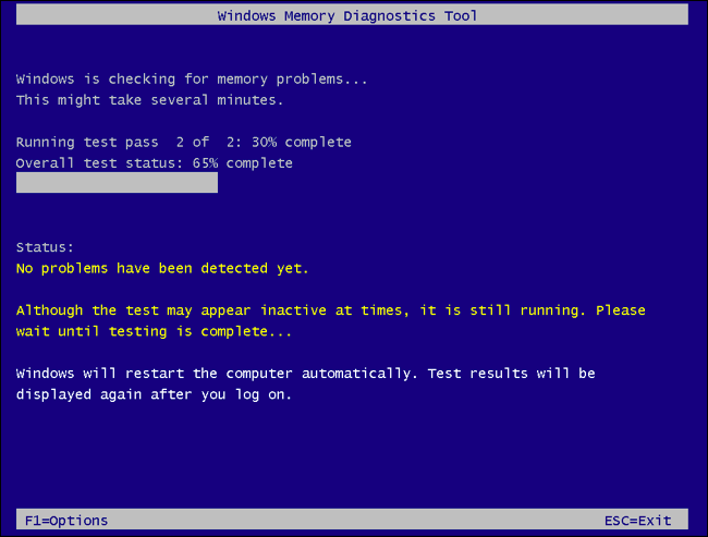 Windows Memory Diagnostics Tool scanning RAM