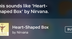 How to See a List of Songs You've Identified Using Siri