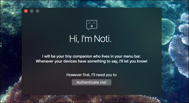 noti-authenticate