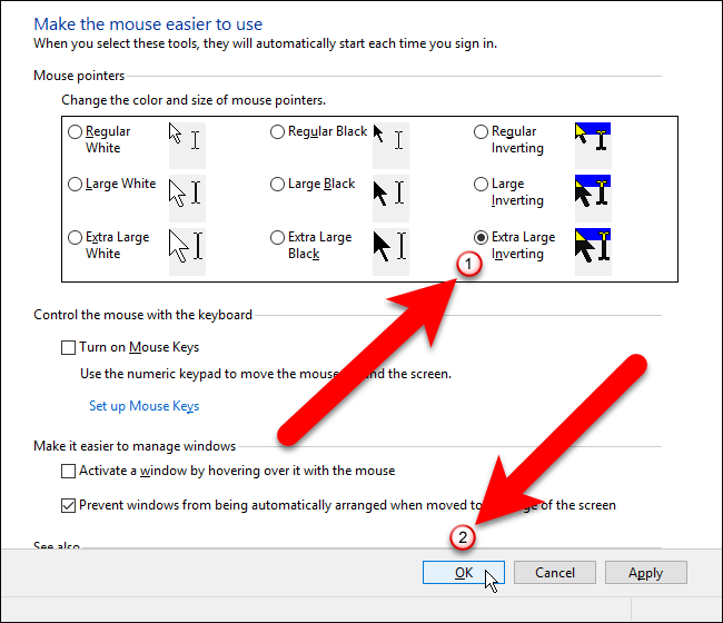 11_selecting_mouse_pointer_in_control_panel