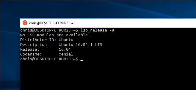 ubuntu 16 no screens found