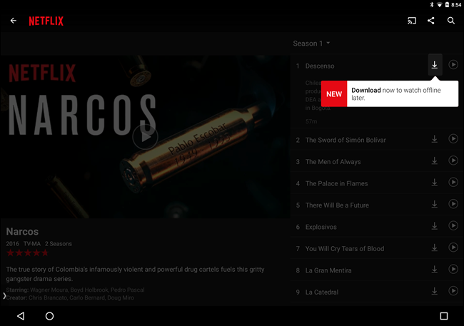 How to Download Movies and Shows From Netflix for Offline Viewing 5