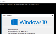 How to Run Windows Programs from Windows 10's Bash Shell