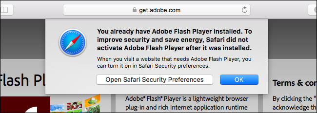 adobe flash player  problems safari