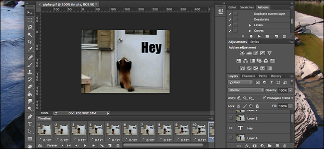 How to Overlay Text (or Anything Else) Over Animated GIFs in