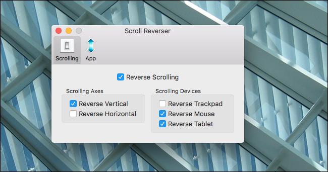scroll-reversal-options