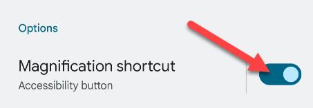 "Enable the ""Magnification Shortcut."""