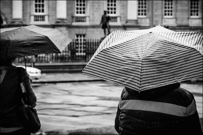 7-umbrella