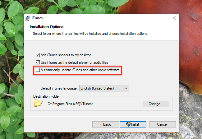 disable-automatic-updates