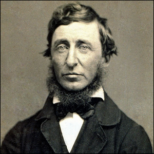 what did henry david thoreau wrote about