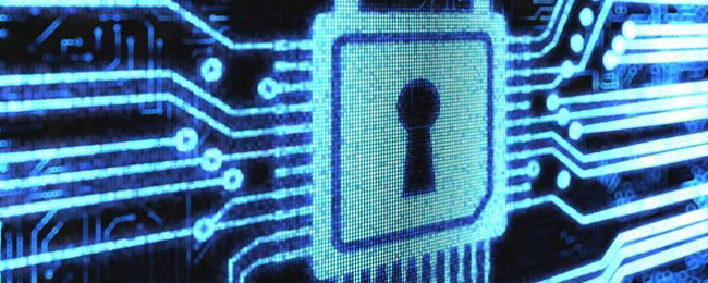 Basic Computer Security: How to Protect Yourself from Viruses, Hackers, and Thieves