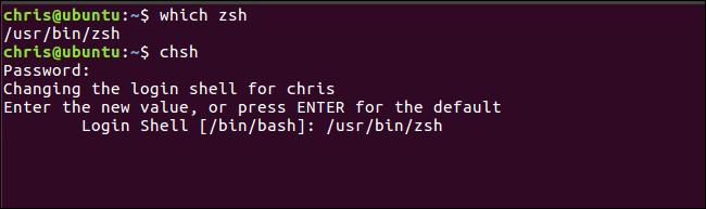 zsh vs bash