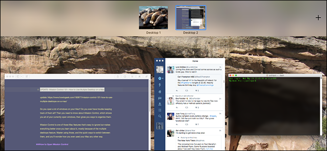 Mission Control 101: How to Use Multiple Desktops on a Mac