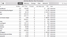 What Is This Process and Why Is It Running on My Mac?