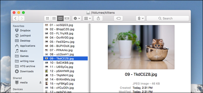 How to Empty the macOS Trash on Your External Drives