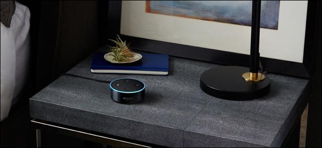 Which Amazon Echo Should I Buy Echo Vs Dot Vs Show Vs Plus And More