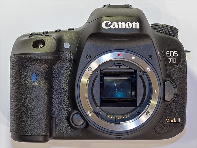 Canon Cameras Use One Of Three Lens Mounts The Standard Ef Mount And Then Two Derivatives S M