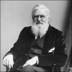 Which Of These Scientists, Independently From Charles Darwin, Conceived The Theory Of Evolution?
