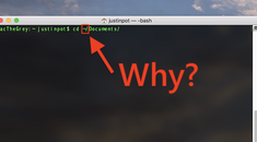 Why Does ~ Represent the Home Folder on macOS and Linux?