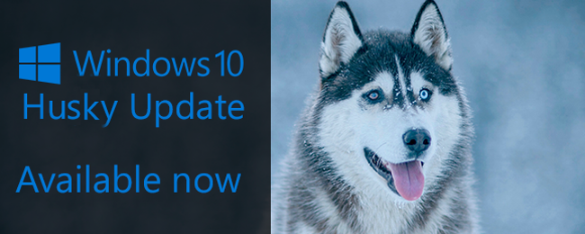 Microsoft Should Name Windows 10 Updates After Dogs
