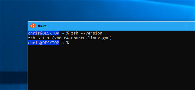 How to Use Zsh (or Another Shell) in Windows 10