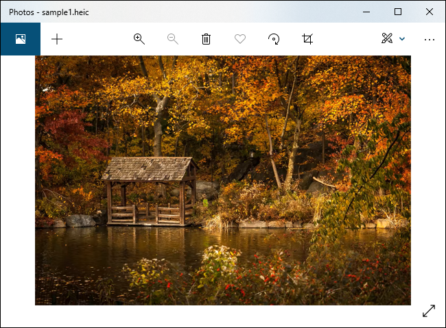 A HEIC file displayed in Windows 10's Photos app.