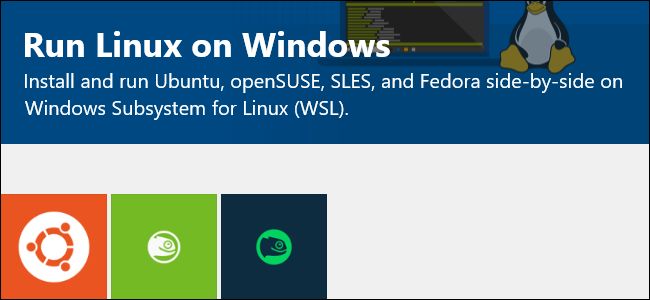 windows subsystem for linux has no installed distributions