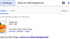 How to Reverse Image Search With Google Images