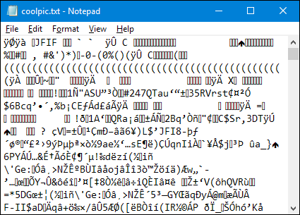 A corrupted file opened in Notepad on Windows