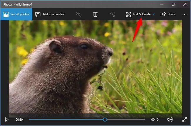 video editing software windows 10 reviews