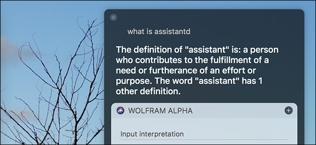 What Are assistant_service and assistantd, and Why Are They
