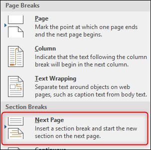 Next Page Page Break