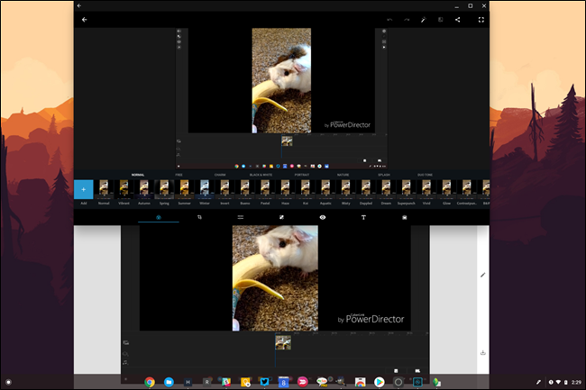 The Best Photo Editors for Chromebooks