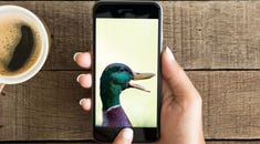 How to Make iPhone AutoCorrect Ducking Let You Swear